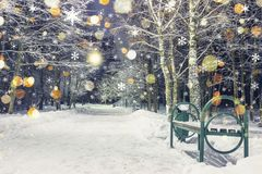 Magic magical Christmas snowfall in winter night park. Shining snowflakes fall on snow. Background of Christmas and new year Royalty Free Stock Photography