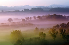 Magic mist. Y landscape at morning Royalty Free Stock Images