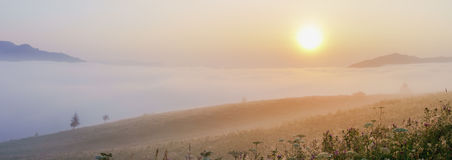 Magic misty sunrise in the mountains. Royalty Free Stock Photo