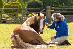 Magic moment-yong girl and her pony Royalty Free Stock Images