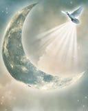 Magic moon Stock Photos