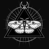 Magic moth. Esoteric symbol, sacred geometry. Stock Photography