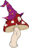 Magic mushroom. The wood wizard a fly agaric Stock Images