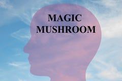 Magic Mushroom concept Stock Image