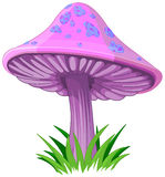 Magic Mushroom royalty free illustration