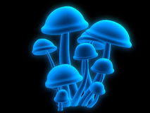 Magic mushrooms. Some 3d rendered magic mushrooms Stock Images