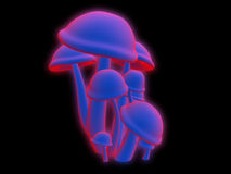 Magic mushrooms. Some 3d rendered magic mushrooms Royalty Free Stock Image