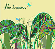 Magic mushrooms Stock Image