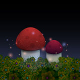Magic mushrooms with fireflies in the night fairy forest. Vector illustration Stock Photos