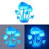 Magic mushrooms isolated vector Stock Photography