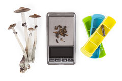 Magic mushrooms medicine. Magic mushrooms medicine, microdosing, pillbox, digital scale, isolated on white background from above. Psychedelic psilocybin Stock Photography
