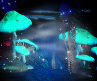 Magic Mushrooms Night Backdrop Royalty Free Stock Images
