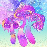 Magic mushrooms. Psychedelic hallucination. Vibrant vector illus. Tration. 60s hippie colorful art royalty free illustration