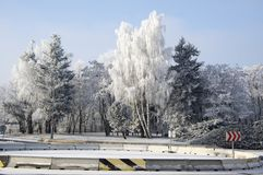 Magic nature place in winter temperatures, frozen tree branches, blue sky, frosty winter day. With sunlight Stock Image