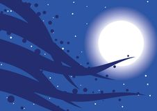 Magic night. Night comes with moon, stars and magic Royalty Free Stock Photo