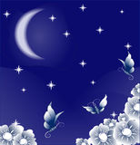 Magic night. Beautiful butterflies, fly over the beautiful flowers exhaling marvelous aroma in a garden, under the night stellar sky and the moon Stock Image