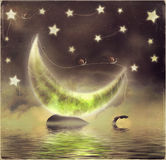 Magic Night: Moon, Stars, Water. Illustration of orca on a starry night background with moon Royalty Free Stock Photography