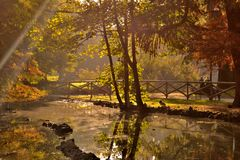 Golden sun rays illuminate a small pond in a city park. Typical autumn day in a park with large trees and a small pond in the middle of the whole scene stock image