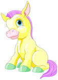 Magic Pony Stock Images