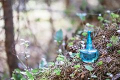 Magic potion on bottle in forest. Magic potion on blue  bottle in forest royalty free stock photo