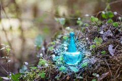 Magic potion on bottle in forest. Blue magic potion on bottle in forest royalty free stock photo