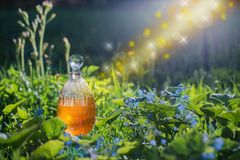 Magic potion in bottle outdoor. The magic potion in bottle outdoor royalty free stock photos