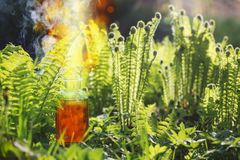 Magic potion in bottle outdoor. The magic potion in bottle outdoor royalty free stock images