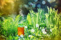 Magic potion in bottle outdoor. The magic potion in bottle outdoor royalty free stock image