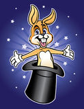 Magic rabbit Royalty Free Stock Photo