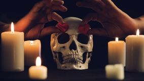 Magic ritual with skull and hearts. Magic rite.A human skull and burning candles. Male hands insert hearts into the eye sockets of the skull. Concept for stock footage