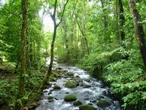 Magic river  in Guapiles, Limón , Costa Rica. Rainforest. Costa Rica is a magic Country. This picture shows a river in the middle of the mountain. Like a Royalty Free Stock Images