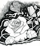 Magic rose and fairies. A fantasy night scene of two fairies growing up a huge rose flower with magic. Ink drawing Stock Image