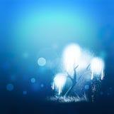 Magic shining tree Stock Photo