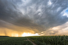 Magic Sky. Stormy clouds over the fields of maize and beets Royalty Free Stock Photo