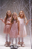 Magic snowfall Stock Photography