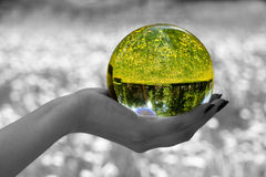 Magic sphere 2. Abstraction. The glass sphere lays on a palm. The turned bright garden with dandelions is visible in sphere. All rest - is decoloured and blur Royalty Free Stock Photos
