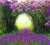 Magic spring forest. Beautiful magic spring forest landscape stock photo