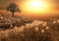 Magic springlike landscape Royalty Free Stock Photo