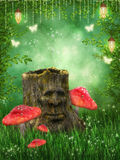 Magic stump Royalty Free Stock Images