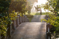 Magic Sunrise. In the park in Bangkok Royalty Free Stock Photography