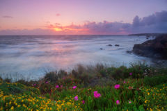 Magic sunset on the Algarve. Stock Photo