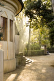 Magic sunshine in Venice royalty free stock image