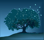 Magic tree Stock Photography