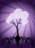 Magic Tree Royalty Free Stock Photo