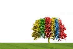 Magic tree Stock Photos