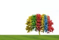 Magic tree. In rainbow colors stock photos