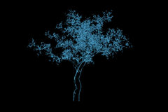 Magic tree 3D rendered xray blue Stock Photography