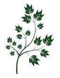 Magic tree. On white background Stock Illustration