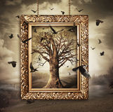 Magic tree with birds in frame. Magic tree with birds in gold frame Stock Photo