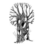 Magic Tree and hares. Hand drawing isolated objects on white background. Vector illustration Stock Images